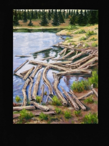 The Trail Series - Beaver Pond
