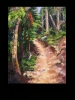 The Trail Series - Ponderosa Pine